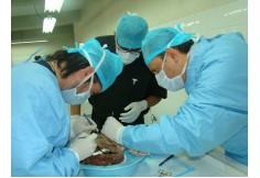 Centro Academia Mexicana de Cirugía Cosmética México