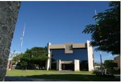 Foto Centro UCOL - Universidad de Colima Colima