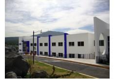 Foto UNIDEP - Universidad del Desarrollo Profesional Sur Querétaro - Querétaro Centro