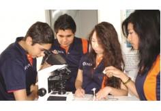 Foto UNEA - Universidad de Estudios Avanzados Cuauhtémoc Colima