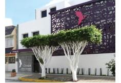 Centro CESIGUE Centro de Estudios e Investigación Guestálticos Xalapa Veracruz 005238