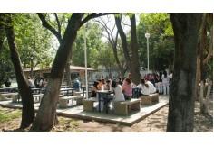 Centro Universitario UTEG Jalisco Centro Foto
