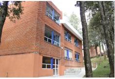 Universidad Albert Einstein Centro